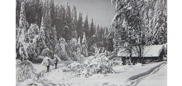 Actief bezig zijn in een schitterende natuur (Finland)